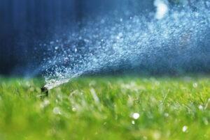 sprinkler-in-spring